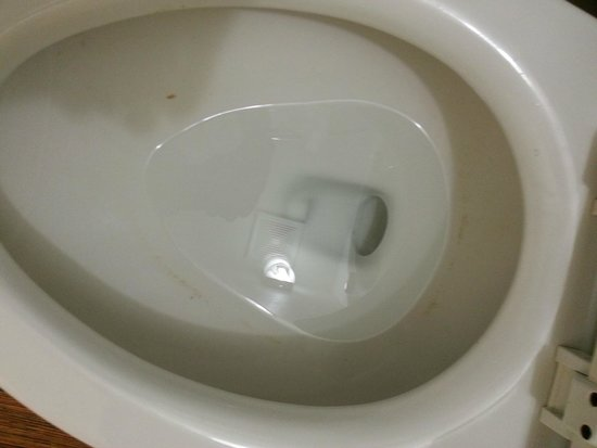 Motel 6 Billings North: Dirty toilet