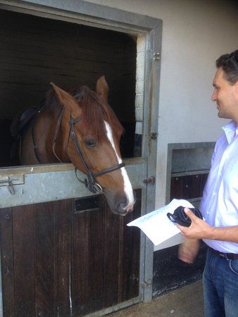 Castle Leslie Estate: My husband and the horse he rode, Wilson