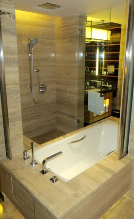 JW Marriott Hotel New Delhi Aerocity: tub shower