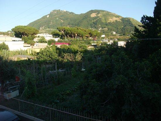 Hotel Villa Franca: Veduta dalla stanza