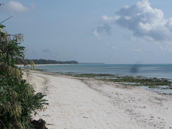 Mbuyuni Beach Village: beach