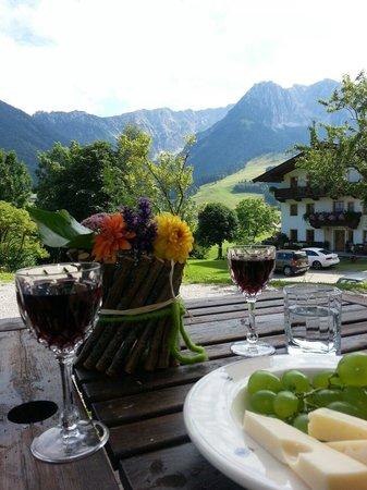 Ferienhof Auerhof: Ausblick von unserer Terrasse