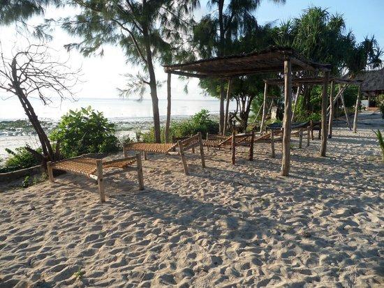 Mbuyuni Beach Village : Pier