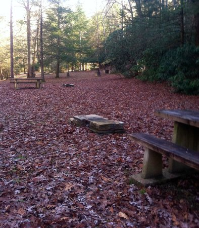Old Fort Picnic Area - Open May through October