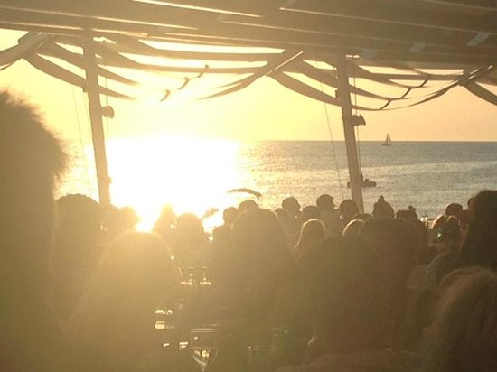 Cafe Mambo : Bravo Sun...Bravo!