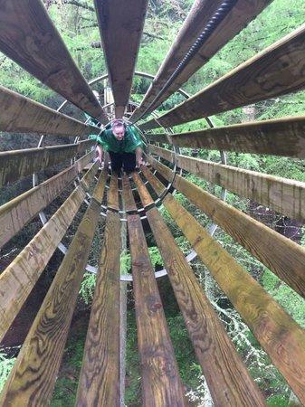 Go Ape Whinlatter: Tunnel fun