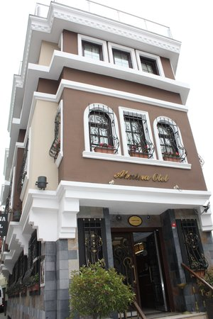 Almina Hotel: Front hotel