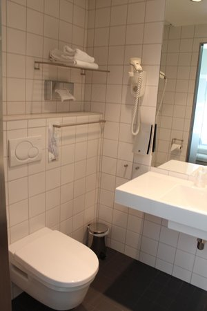 Comfort Hotel Park: Ванная2
