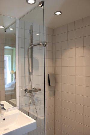 Comfort Hotel Park: Ванная1