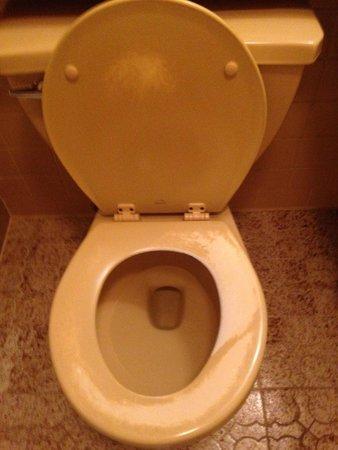 Brookside Resort: Worn paint  on the toilet!