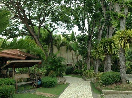 Costabella Tropical Beach Hotel: Зелено и тихо