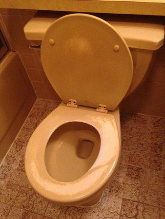 Brookside Resort: Toilet
