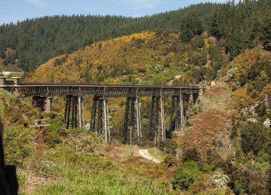 Taieri Gorge Railway: Wingatui Viaduct