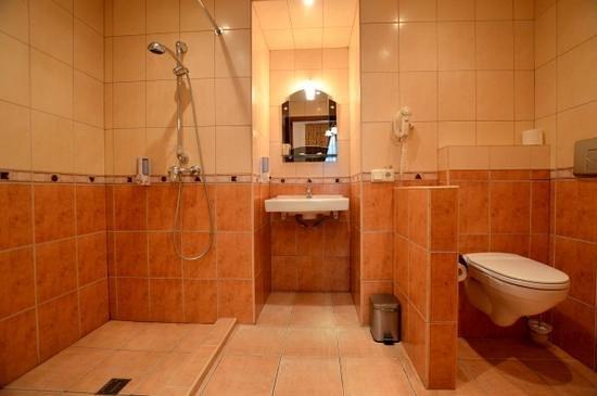 Hotel Vera: Classic twin, handicapped access, bathroom