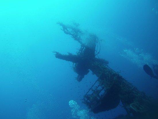 Bezz Diving Centre: P29