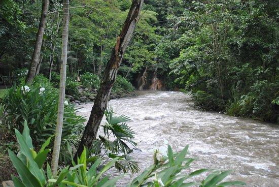 Club Rio Outdoor Center: river