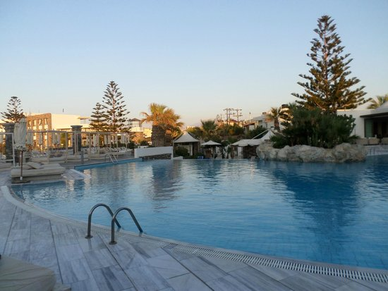The Island Hotel : Pool