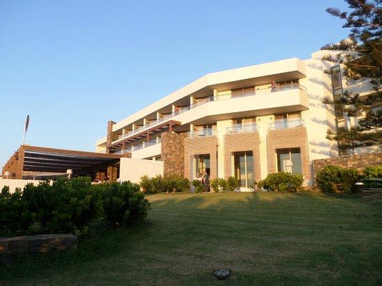 The Island Hotel : Hotel