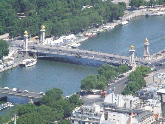 Seine River: Мост Александра Третьего.