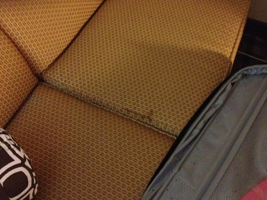 Crowne Plaza Hotel Cincinnati Blue Ash : Stained couch