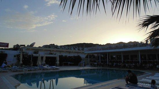 Petunya Beach Resort: Widok z basenu