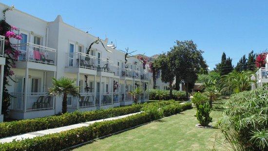 Petunya Beach Resort: Teren hotelu