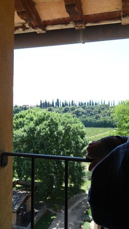Il Borghetto di San Gimignano Agriturismo: One of the views from our room