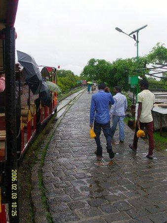 Elephanta Caves: Train From The Boat