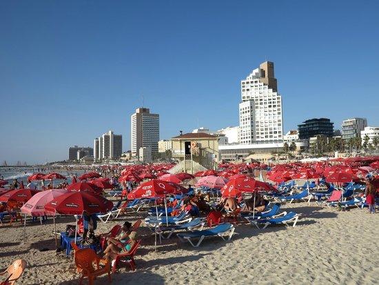 The Lusky – Great Small Hotel : Набережная. Ближайший пляж.