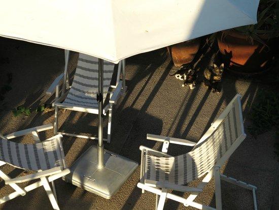 The Lusky – Great Small Hotel: Вид из окна