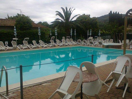 Hotel Delle Mimose: piscina