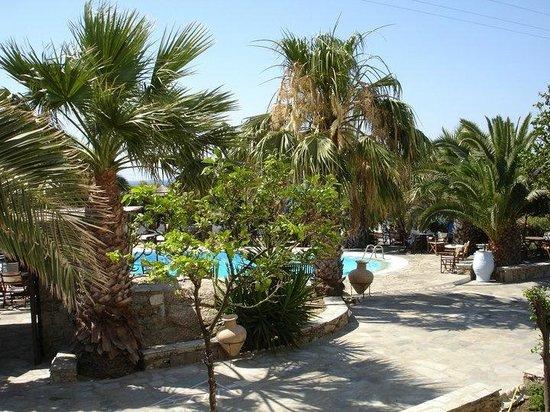 Zephyros Hotel: zicht op zwembad en tuin vanuit het hotel
