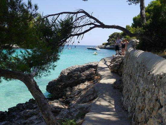 Gavimar Ariel Chico Club Resort: Beach Cala Gran