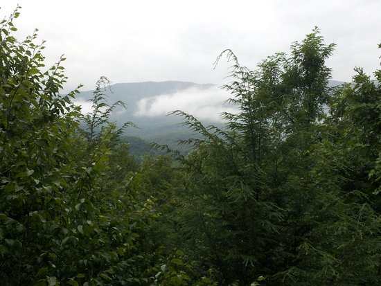 Honeymoon Hills Gatlinburg Cabin Rentals: View from the deck