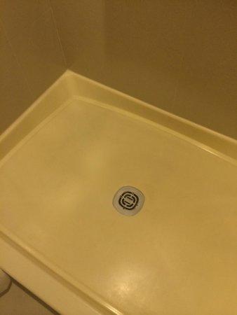 New Haven Hotel: Shower