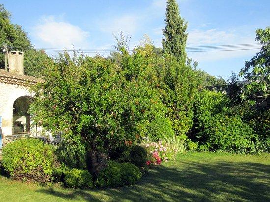 Les Bouisserettes : giardino e patio
