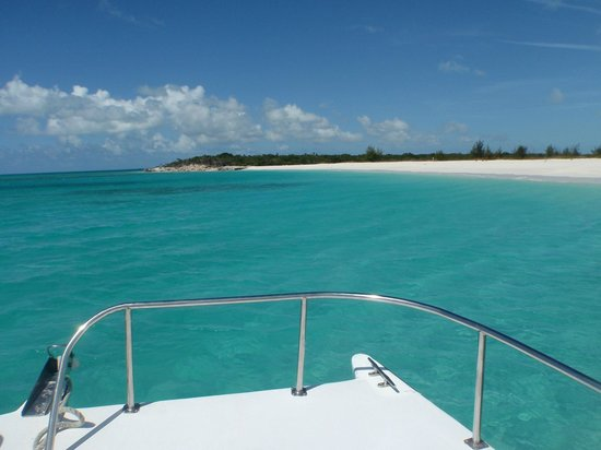 Island Vibes Tours : Iguana Island
