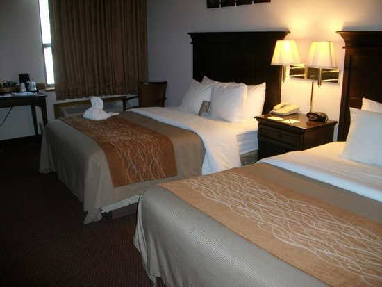 Comfort Inn at Thousand Hills: Room #218
