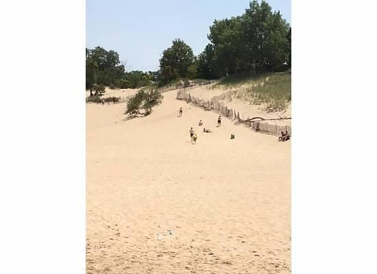 Indiana Dunes State Park: Up on the dunes