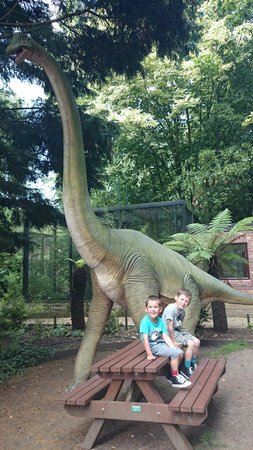 Lunch with the dinosaur's at Linton Zoo