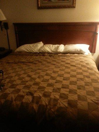 Americas Best Value Inn- Hanford: lovely flat pillows