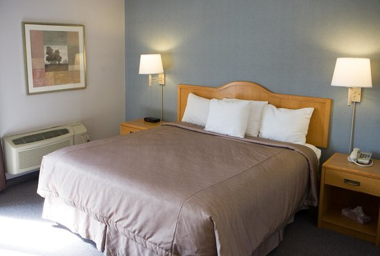 Super 8 Port Elgin: Deluxe Business Class king room.  Renovated in 2014