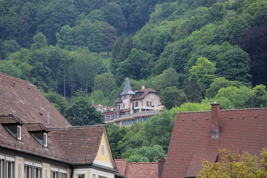 Schwarzwälder Hof Hotel: the forest bluff behind the hotel and cathedral