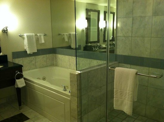 Caesars Palace : Tub and Shower