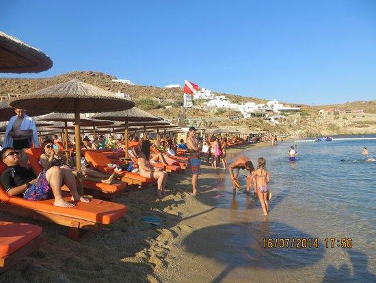 Paradise Beach: sdraio fino al mare al Paradise