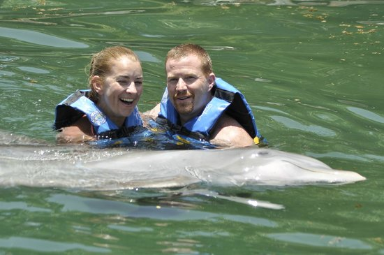 Dolphin Discovery Puerto Aventuras: couples dolphin hold