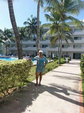 SunSol Isla Caribe: Enero 2014. Oddaliz.