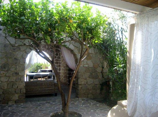 Villa Sea Rose: Veranda