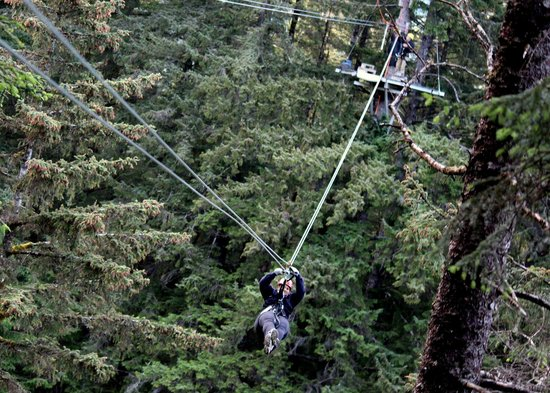 Alaska Canopy Adventures (Juneau) - All You Need to Know Before You Go (with Photos) - TripAdvisor & Alaska Canopy Adventures (Juneau) - All You Need to Know Before ...