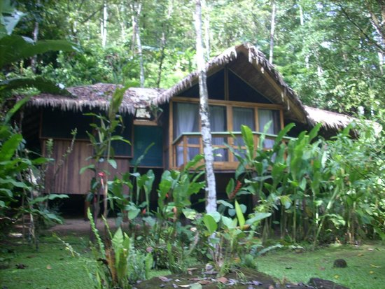 Pacuare Lodge: Our Lodge